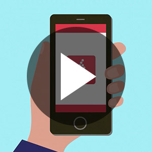 Vivino Video Examples