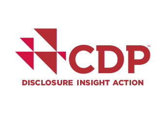 Mapping Carbon Pricing for CDP